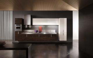Cucina contemporanea_Free_Inox Look_composizione finiture essenza di ebano e laccato lucido bianco, top inox